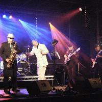 NUTTYNESS - MADNESS TRIBUTE tickets and 2018 tour dates