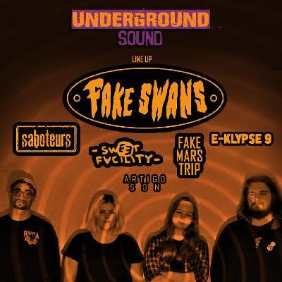 Fake Swans