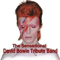 The Sensational David Bowie Tribute Band tickets and 2019  tour dates