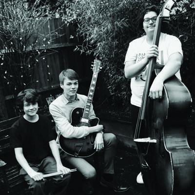 The Harrison Dolphin Trio